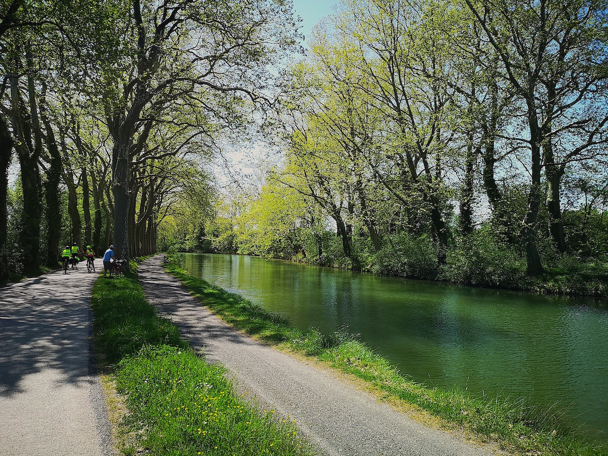 A picture of the Canal du Midi just outside Toulouse that shows the canal, the canopy of trees, and several bike riders.